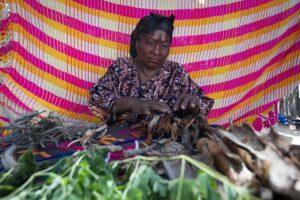 Desde muy pequeña, Rosa Linda aprendió de su mamá y abuela acerca del uso terapéutico de las plantas medicinales en las personas.